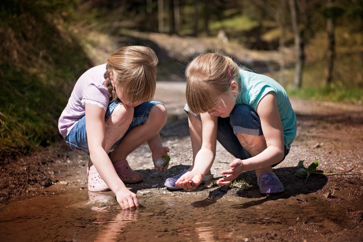 « Conséquences du changement climatique sur les milieux aquatiques »REPORTÉE À UNE DATE ULTÉRIEURE