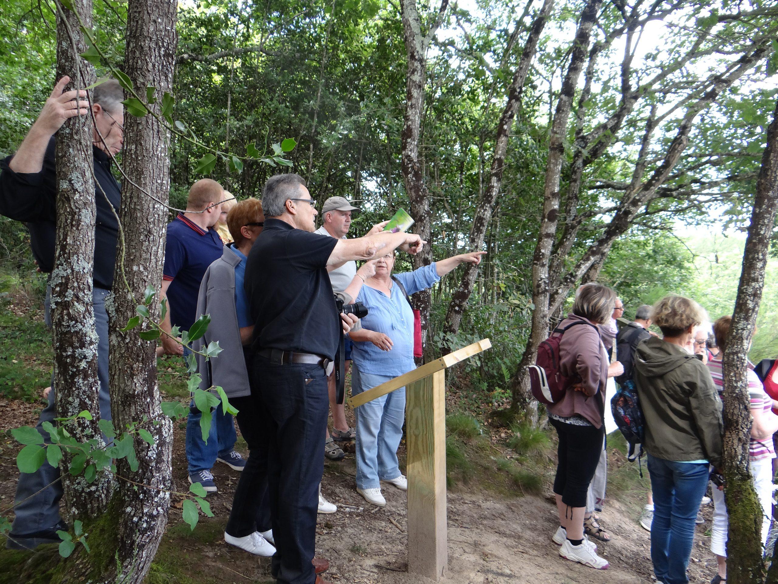 Balade découverte nature commentée : départ 15h Maison des expositions Saulgé
